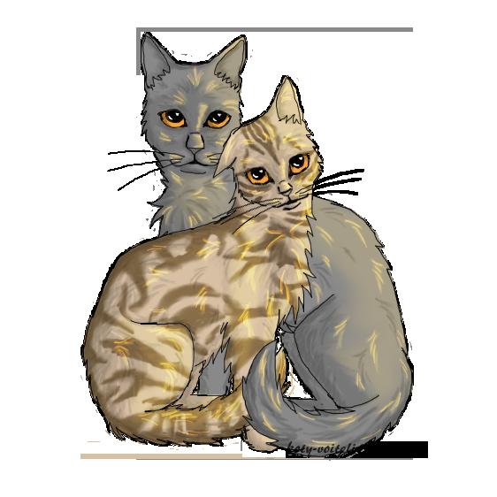 Картинки котов воителей пара