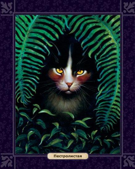 Эрин хантер – серия книг коты-воители – скачать по порядку в fb2.